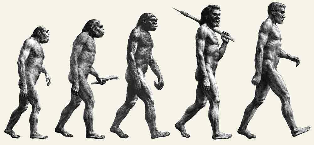 современные люди выше своих предков