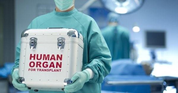 Контейнер с донорскими органами