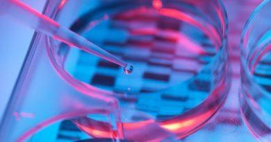 ДНК анализ