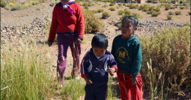 Жители аргентинской деревни потребляют мышьяк