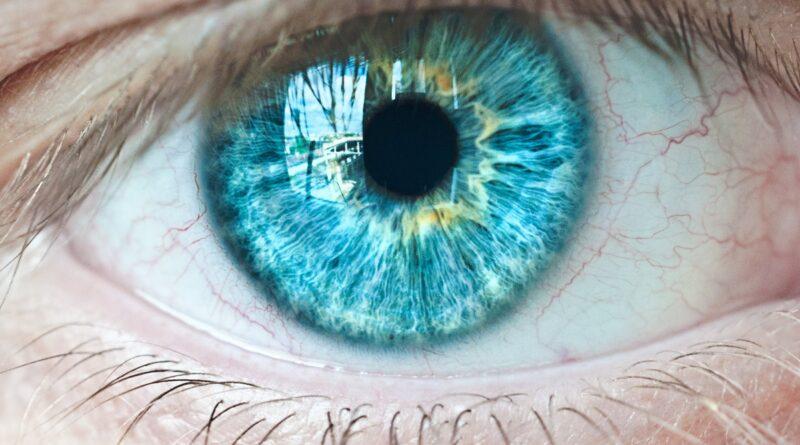 Цвет глаз и генетика